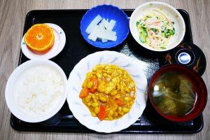 きょうのお昼ごはんは、鶏肉と大豆のカレー煮、サラダ、ゆず大根、みそ汁、果物でした。