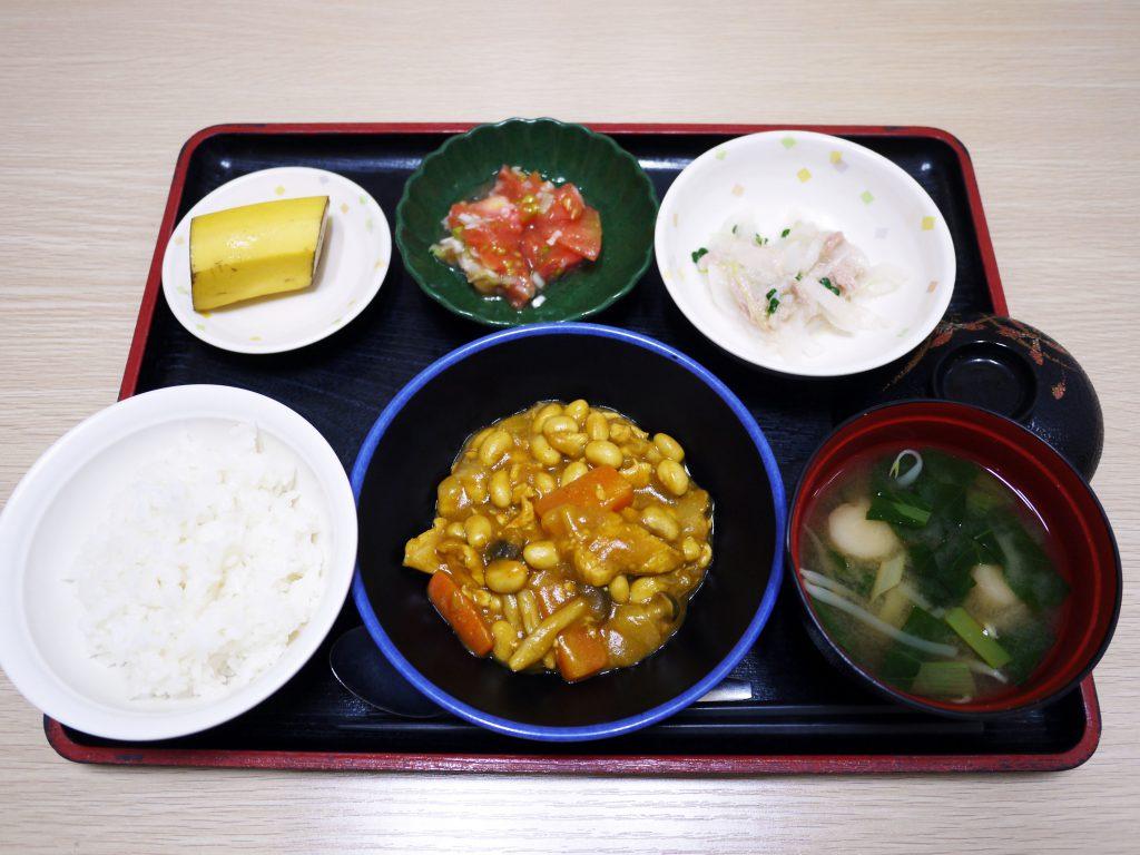 今日のお昼ごはんは、鶏肉と大豆のカレー煮、大根サラダ、ねぎ塩トマト、みそ汁、果物でした。
