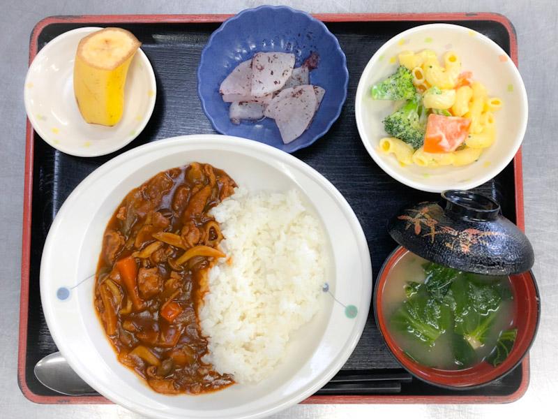 今日のお昼ごはんは、ハヤシライス、マカロニサラダ、ゆかり大根、みそ汁、果物でした。