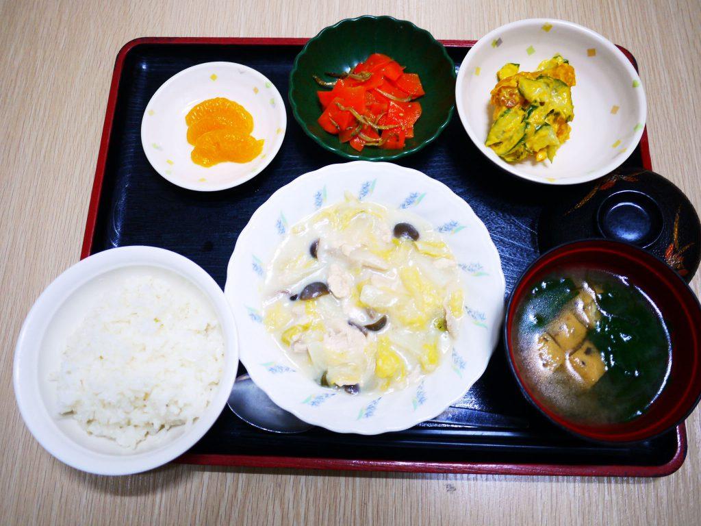 きょうのお昼ごはんは、鶏肉と白菜のクリーム煮・サラダ・じゃこ人参・みそ汁・くだものでした。