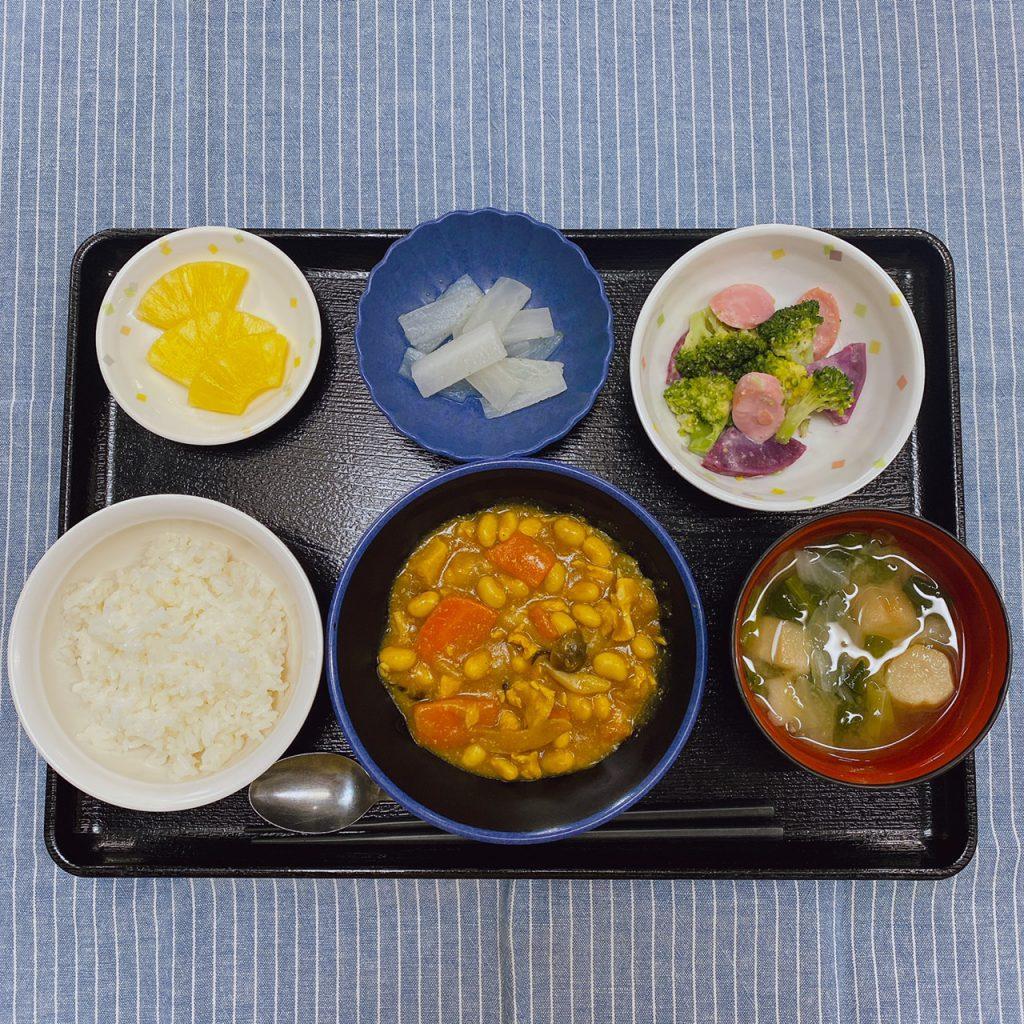 きょうのお昼ごはんは、鶏肉と大豆のカレー煮・サラダ・ゆず大根・みそ汁・くだものでした。