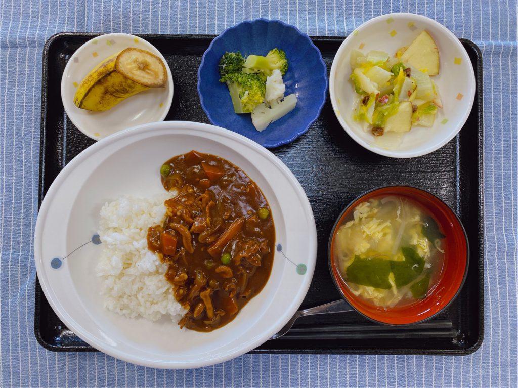 きのうのお昼ごはんは、ハヤシライス・りんごと白菜のサラダ・花野菜・スープ・果物でした。