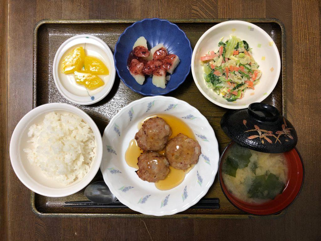 きょうのお昼ごはんは、大根入り豚バーグ・和風コールスロー・みそ汁・くだものでした。
